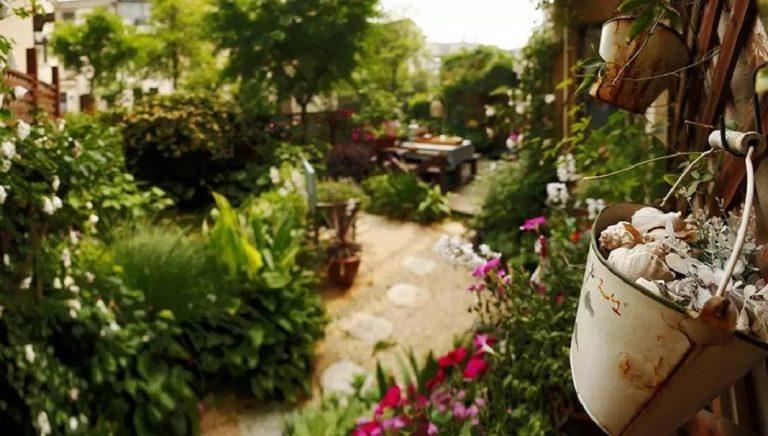 Khu vườn bình yên như xứ sở thần tiên ngập tràn hoa lá do cô gái tận tụy bỏ cả thanh xuân để chăm bón suốt 10 năm