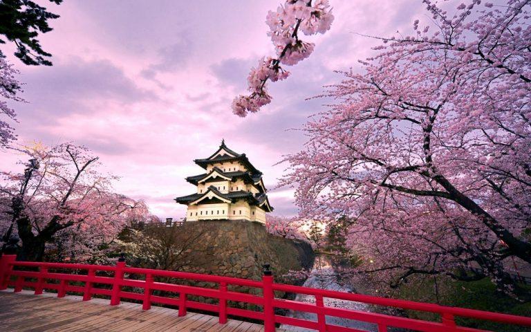 16 điều vừa tiện vừa lạ ở Nhật khiến du khách sành điệu nhất cũng không dám nói mình hiểu hết đất nước này